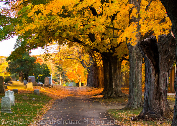 Greenwood Cemetary, St. Albans Vermont