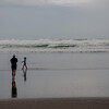 Bethell's Beach, West Coast NZ