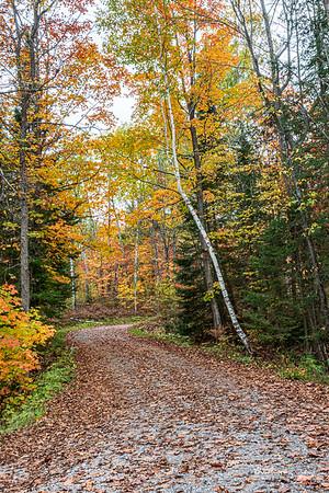 October3-277_365_morrissey20-14