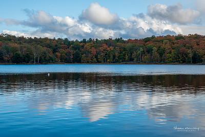 October2-276_365_morrissey20-10
