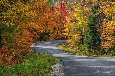 October3-277_365_morrissey20-9