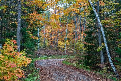 October3-277_365_morrissey20-13