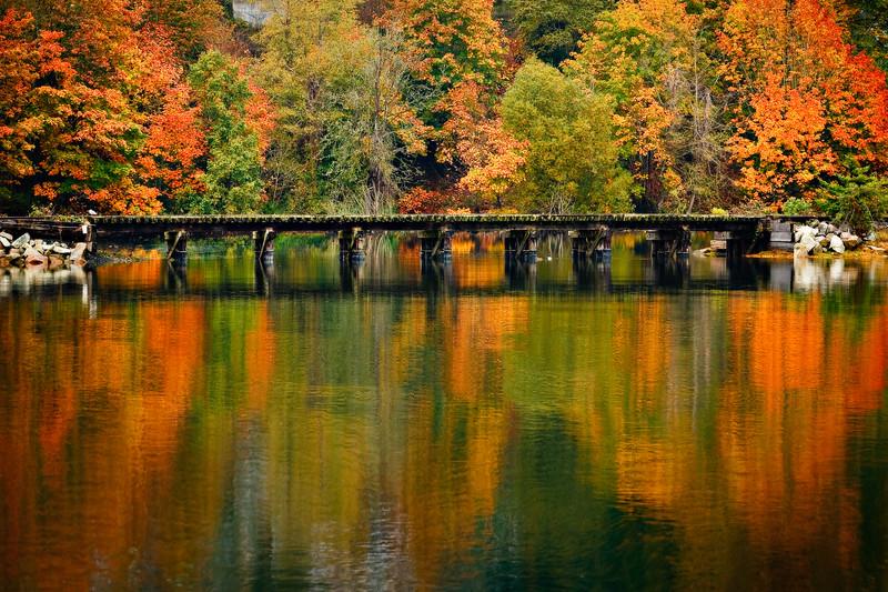 Abandoned Railroad Bridge - Olympia, WA