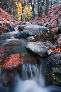 Autumn, Red Creek