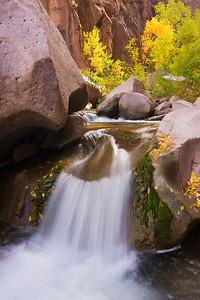 Fall Backdrop, Pinto Creek