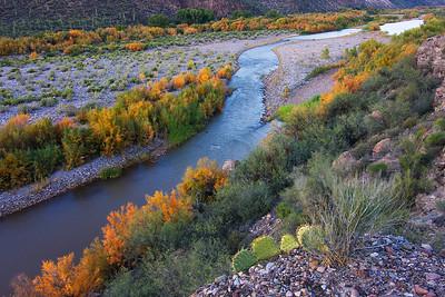 Salt Cedar Autumn, Salt River Canyon Wilderness