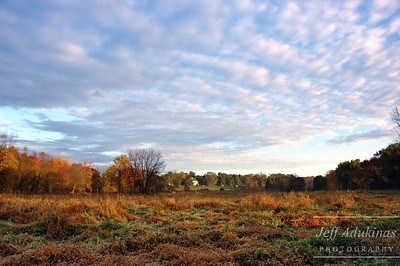 Huntingdon Valley Farm