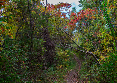 Indian Hill trail, Perinton
