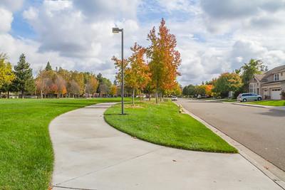 HDR Composition. Hansen Park - Pleasanton, CA, USA