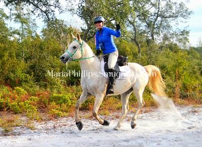 Autumn Gallop at Dunns Creek 2016