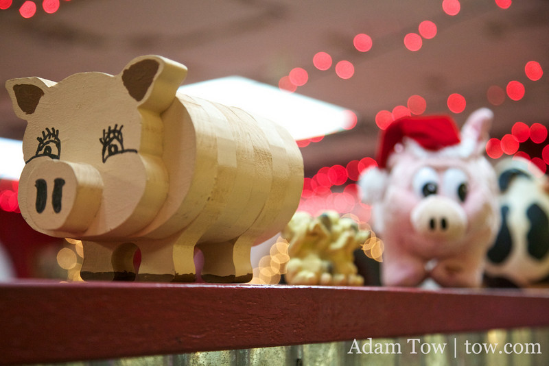 Cute little piggies at Cackle and Oink.