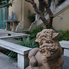 Lions adorn the Pacific Asia Museum courtyard.