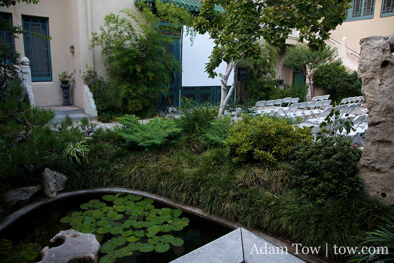 A small Koi pond in the Pacific Asia Museum courtyard.