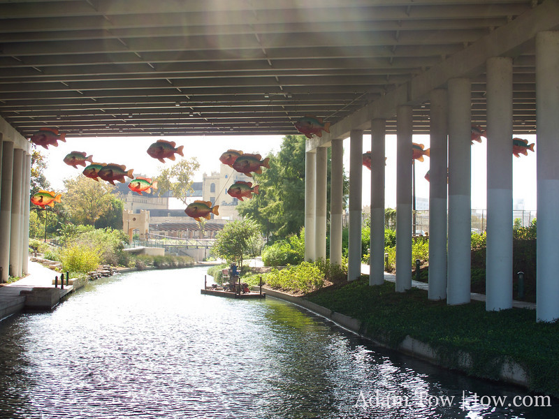 Tilpaia fish rise high above the Riverwalk.