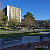 The UNLV campus.