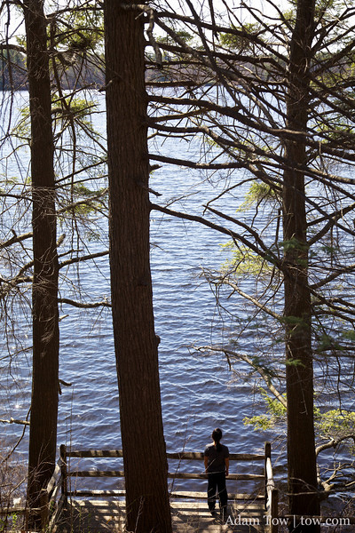 Rae overlooing Lake Waban.