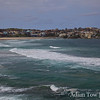 I never appreciated the beauty of La Jolla growing up, but I can see the appeal of it after visiting Bondi Beach.