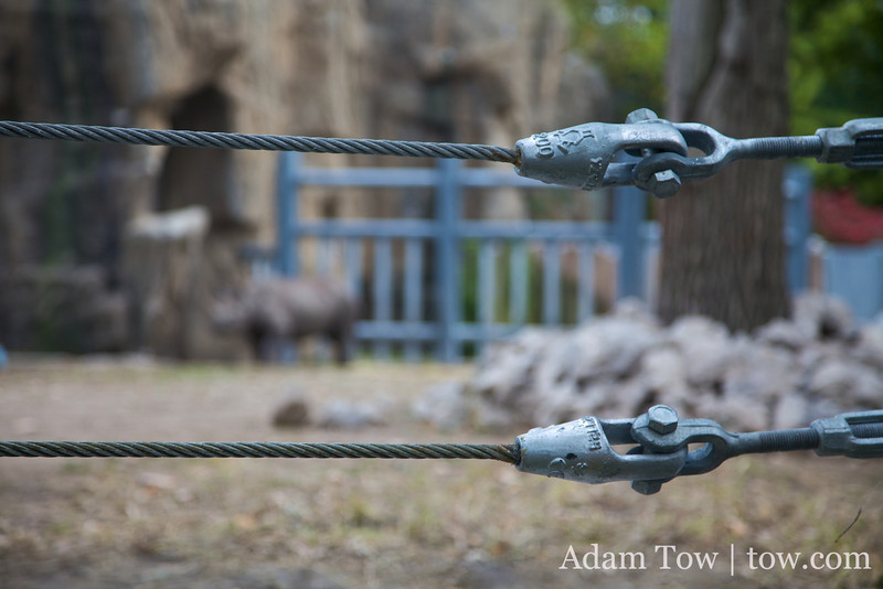 Steel cables to prevent the rhino from escaping.