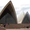 Shark fins cutting through Sydney.