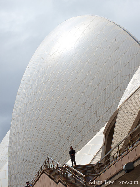 Adam at the Opera House.