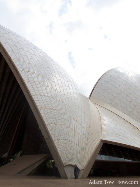 Adam is very small next to the Opera House.