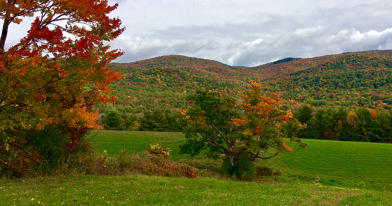 Taconic Mountains Color