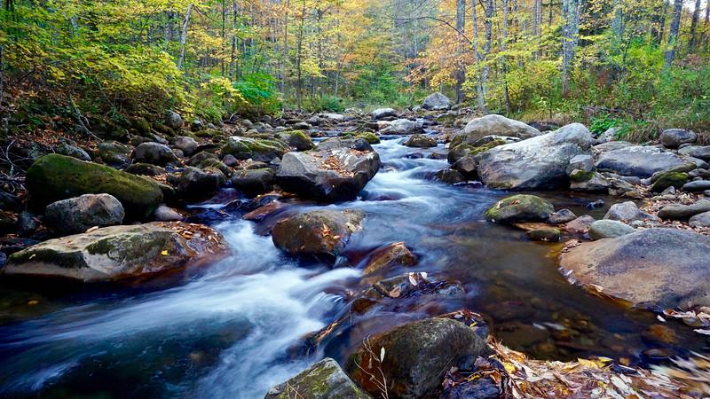 Vermont Creek