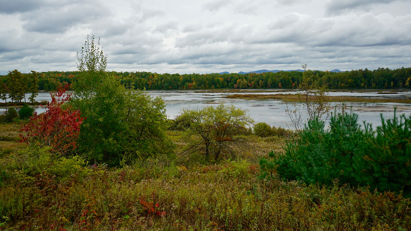 Old Marsh Pond Overlook