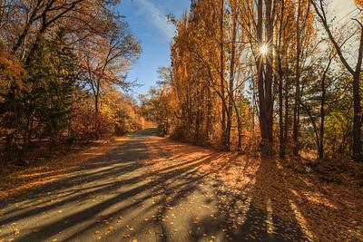 Autumn's Peak in Naramata
