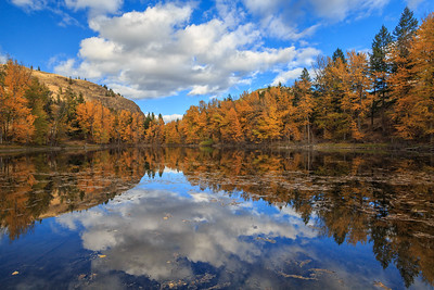 Fall's Mirror