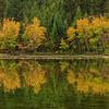 Sawmill Pond Autumn Aspens Pano