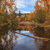 Penticton Creek Autumn Reflections