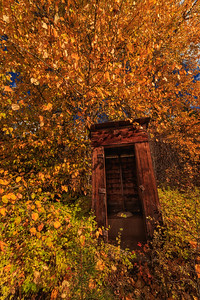 Autumn Outhouse Vert