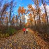 Mission Creek Greenway- Autumn Walk