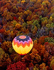 Autumn From Above