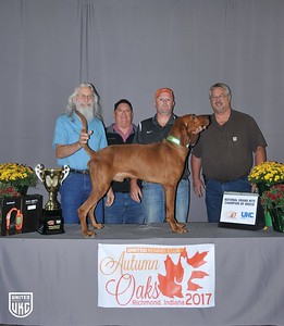 National Grand Nite Champion Redbone