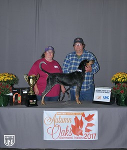 National Grand Nite Champion Bluetick