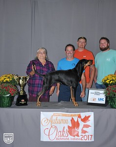 National Grand Show Champion Black & Tan