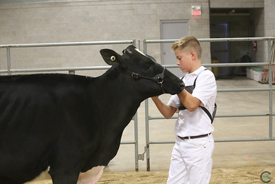 Autumn Opportunity Showmanship