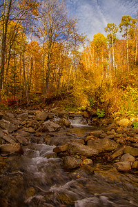 Quation Brook near Sharon VT Fall Portrait 10-12-15