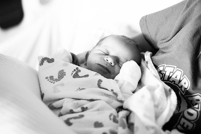 Autumn Willow Newborn Session (8 of 72)