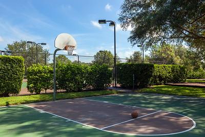 Autumn Woods Basketball 2