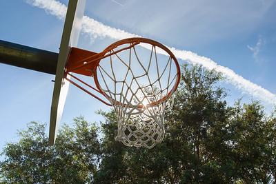 Autumn Woods Basketball