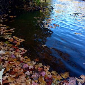 Autumn along the Shawsheen River in Billerica