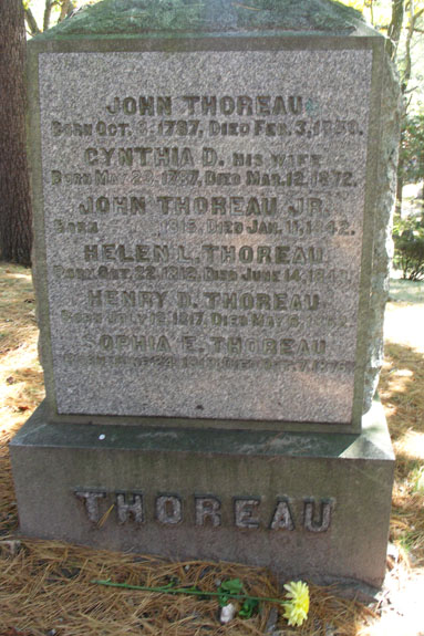 The Thoreau Family, Sleepy Hollow Cemetery