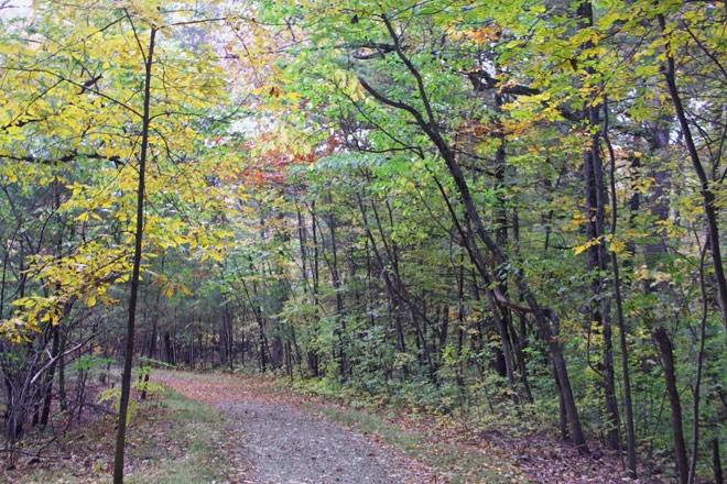 Entering Moose Hill Audobon Sanctuary
