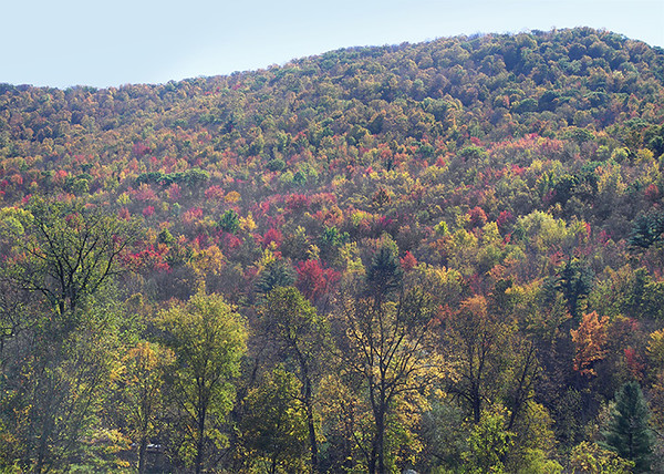 Arlington, Vermont scenes