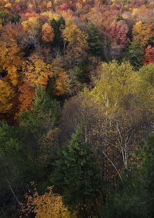 View from the Cut River Bridge near Brevort, Michigan