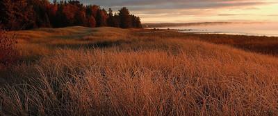 Grassy Lakeshore along Lake Michigan - Naubinway