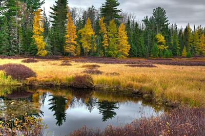 An Autumn Roadside Pond on M-28 near McMillan, MI
